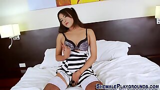 Asian tranny toys her ass